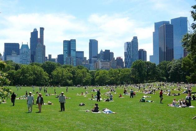 7429, New York, NY, 10019 - Photo 2