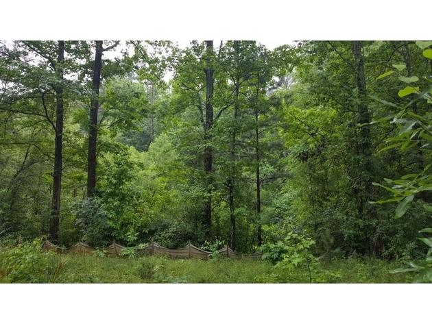 1778, Dunwoody, GA, 30338 - Photo 2