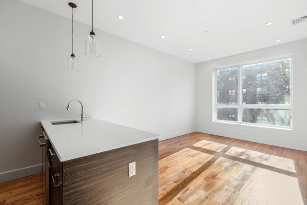 3397, Brooklyn, NY, 11221 - Photo 1