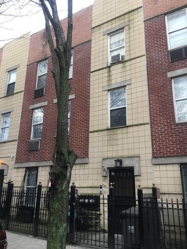 10000000, Bronx, NY, 10451 - Photo 1