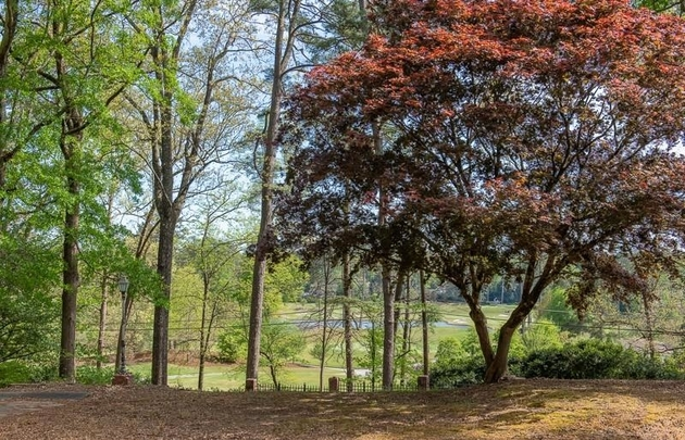10187, Atlanta, GA, 30319 - Photo 2