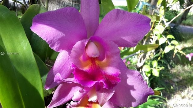 3733, Coral Gables, FL, 33134 - Photo 1