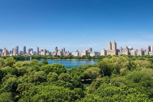 16314, New York, NY, 10029 - Photo 2