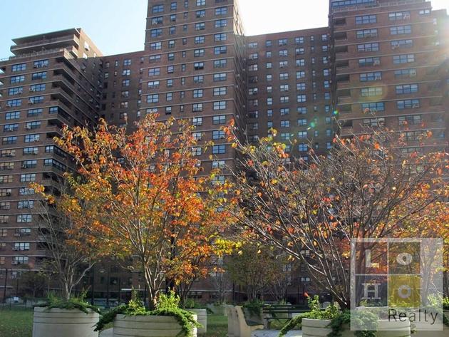 6123, Manhattan, NY, 10002 - Photo 1