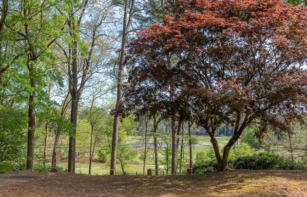 8916, Atlanta, GA, 30319 - Photo 2