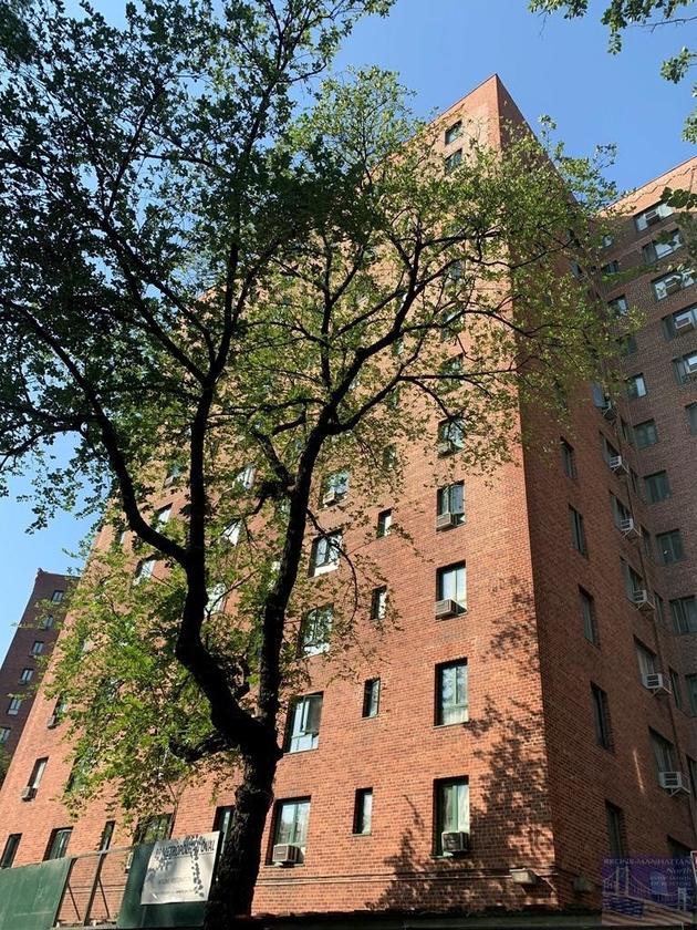 1013, Bronx, NY, 10462 - Photo 1