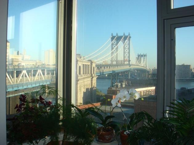 4783, Brooklyn, NY, 11201 - Photo 2
